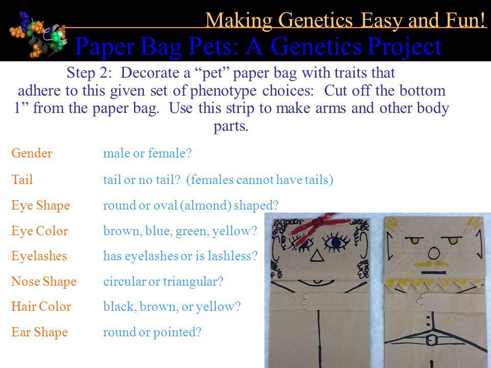 Paper Bag Pets: A Genetics Project Making Genetics Easy and Fun.