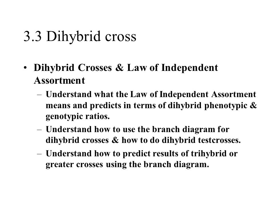 3.3 Dihybrid cross Dihybrid Crosses & Law of Independent Assortment –Understand what the Law of Independent Assortment means and predicts in terms of dihybrid phenotypic & genotypic ratios.