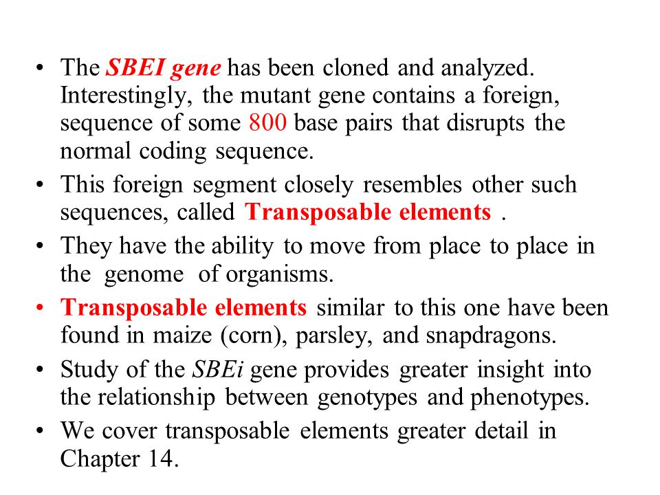 The SBEI gene has been cloned and analyzed. Interestingly, the mutant gene contains a foreign, sequence of some 800 base pairs that disrupts the norma