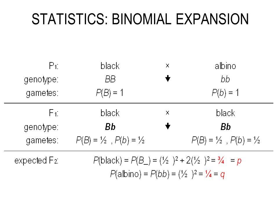 STATISTICS: BINOMIAL EXPANSION