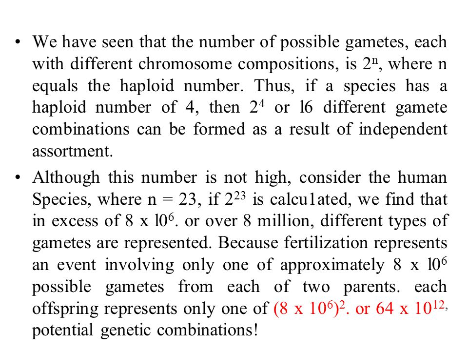 We have seen that the number of possible gametes, each with different chromosome compositions, is 2 n, where n equals the haploid number.