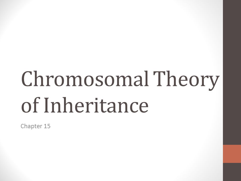 LEARNING TARGET 1 I can explain the chromosome theory of inheritance.