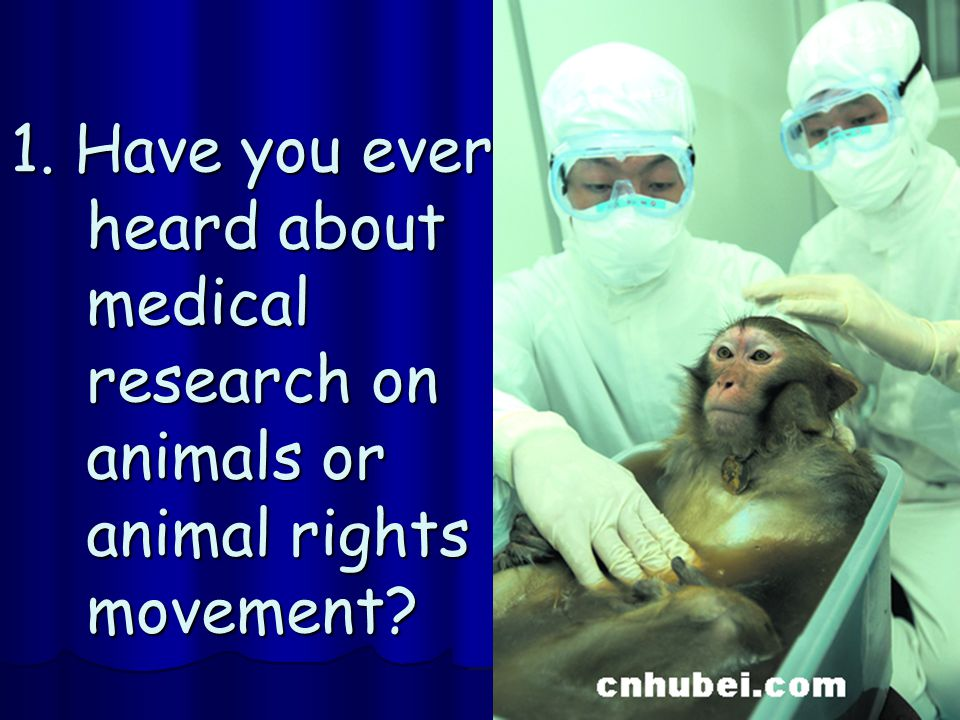1. Have you ever heard about medical research on animals or animal rights movement?