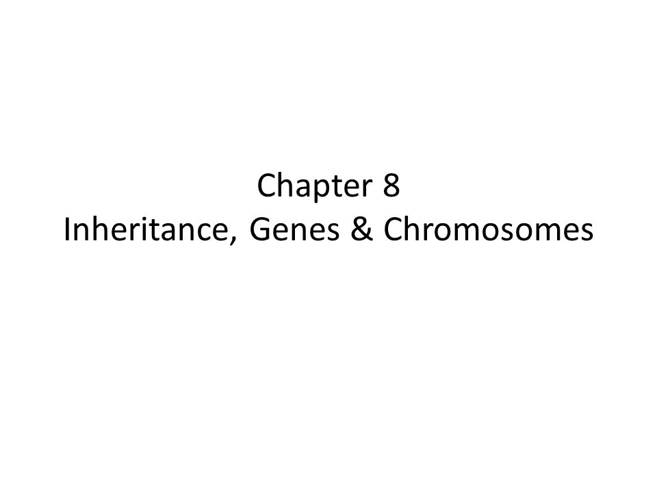 Chapter 8 Inheritance, Genes & Chromosomes