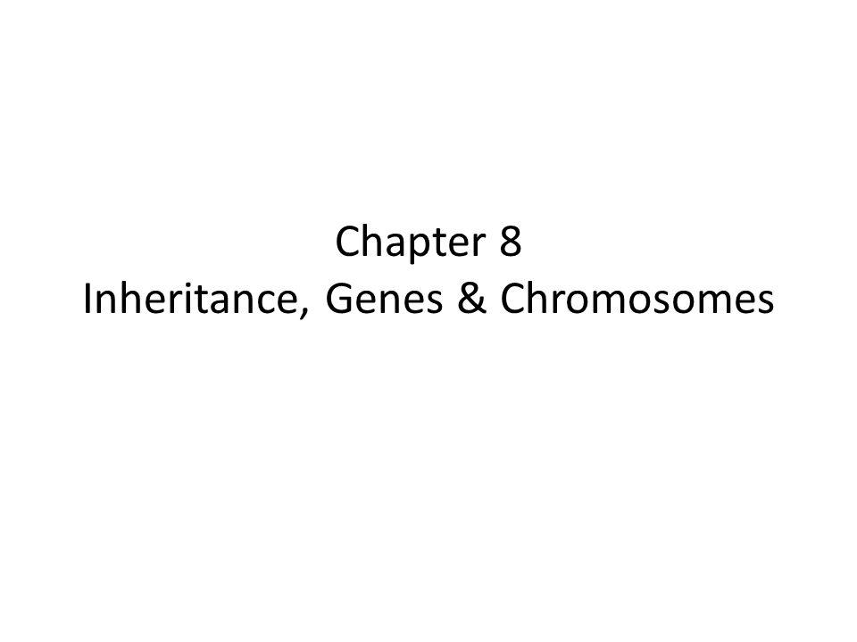 Chapter 8 Inheritance, Genes & Chromosomes