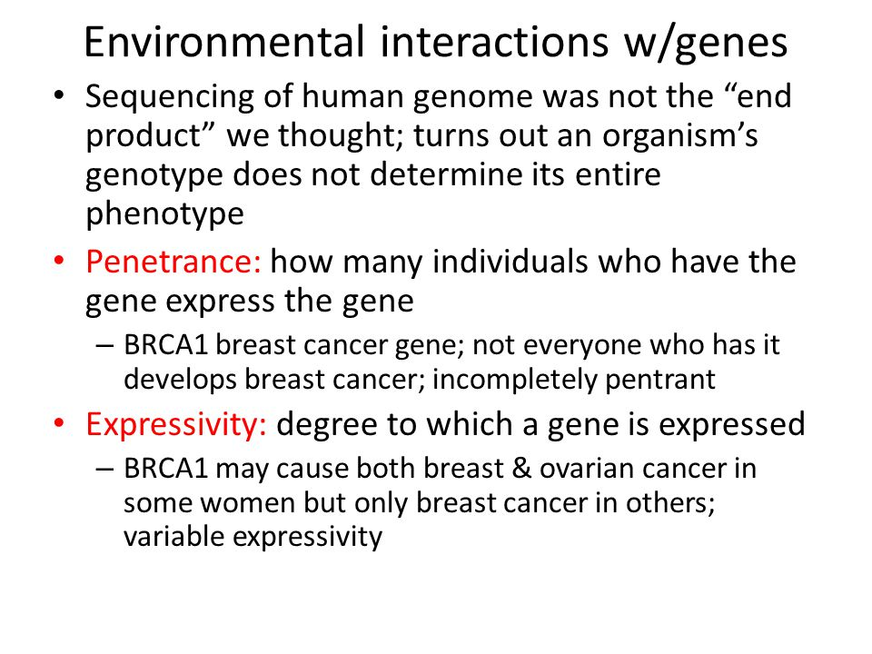 Environmental interactions w/genes Sequencing of human genome was not the end product we thought; turns out an organism's genotype does not determine its entire phenotype Penetrance: how many individuals who have the gene express the gene – BRCA1 breast cancer gene; not everyone who has it develops breast cancer; incompletely pentrant Expressivity: degree to which a gene is expressed – BRCA1 may cause both breast & ovarian cancer in some women but only breast cancer in others; variable expressivity