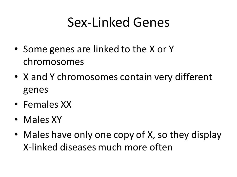 Sex-Linked Genes Some genes are linked to the X or Y chromosomes X and Y chromosomes contain very different genes Females XX Males XY Males have only one copy of X, so they display X-linked diseases much more often