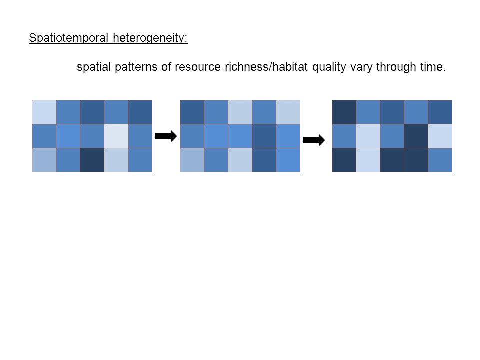 Spatiotemporal heterogeneity: spatial patterns of resource richness/habitat quality vary through time.