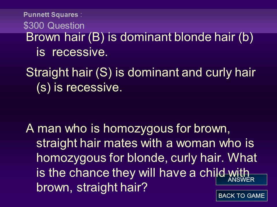 Punnett Squares : $300 Question BACK TO GAME ANSWER Brown hair (B) is dominant blonde hair (b) is recessive.