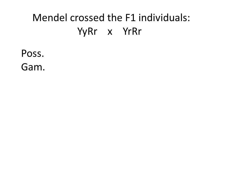 Mendel crossed the F1 individuals: YyRr x YrRr Poss. Gam.