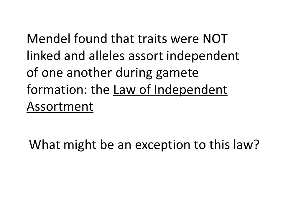 Mendel found that traits were NOT linked and alleles assort independent of one another during gamete formation: the Law of Independent Assortment What might be an exception to this law