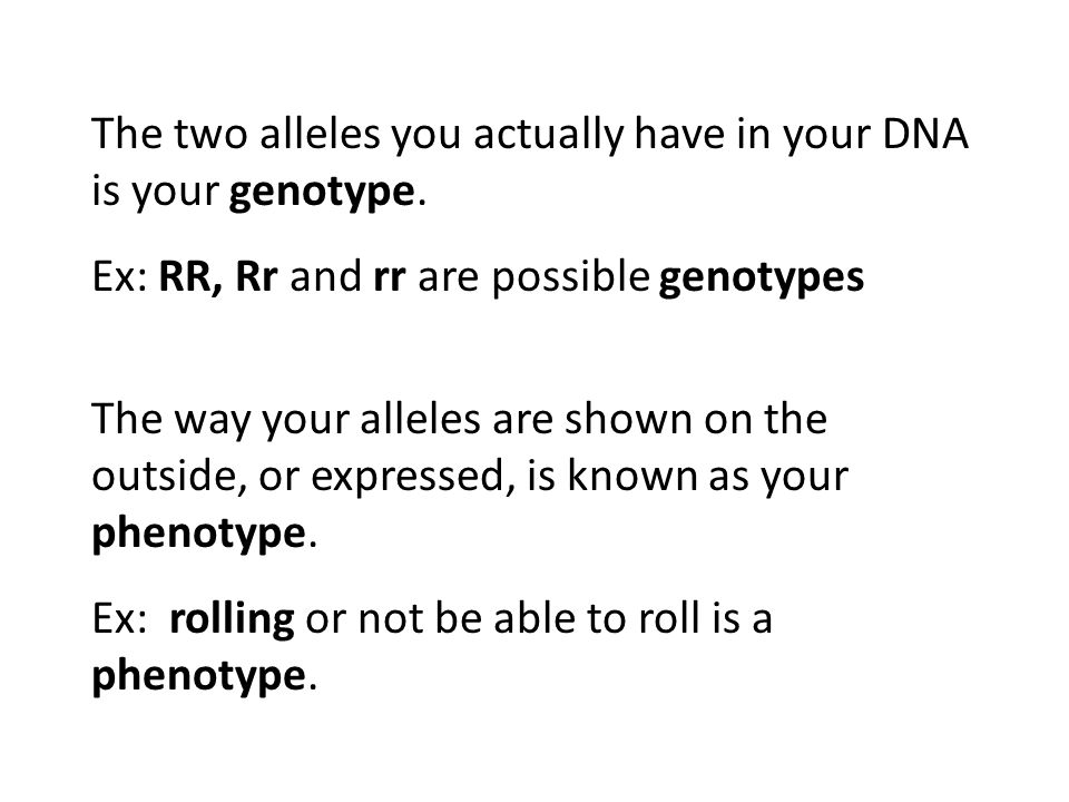 The two alleles you actually have in your DNA is your genotype. Ex: RR, Rr and rr are possible genotypes The way your alleles are shown on the outside