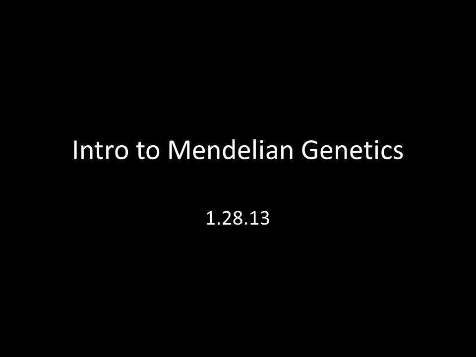 Intro to Mendelian Genetics 1.28.13