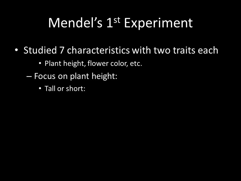 Mendel's 1 st Experiment Studied 7 characteristics with two traits each Plant height, flower color, etc.