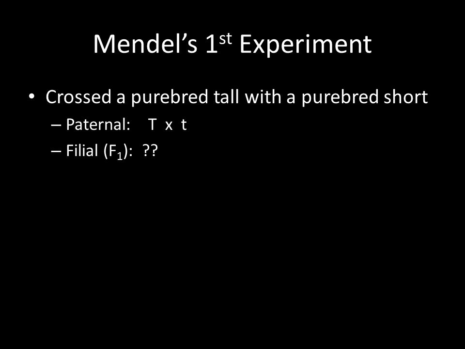 Mendel's 1 st Experiment Crossed a purebred tall with a purebred short – Paternal: T x t – Filial (F 1 ):