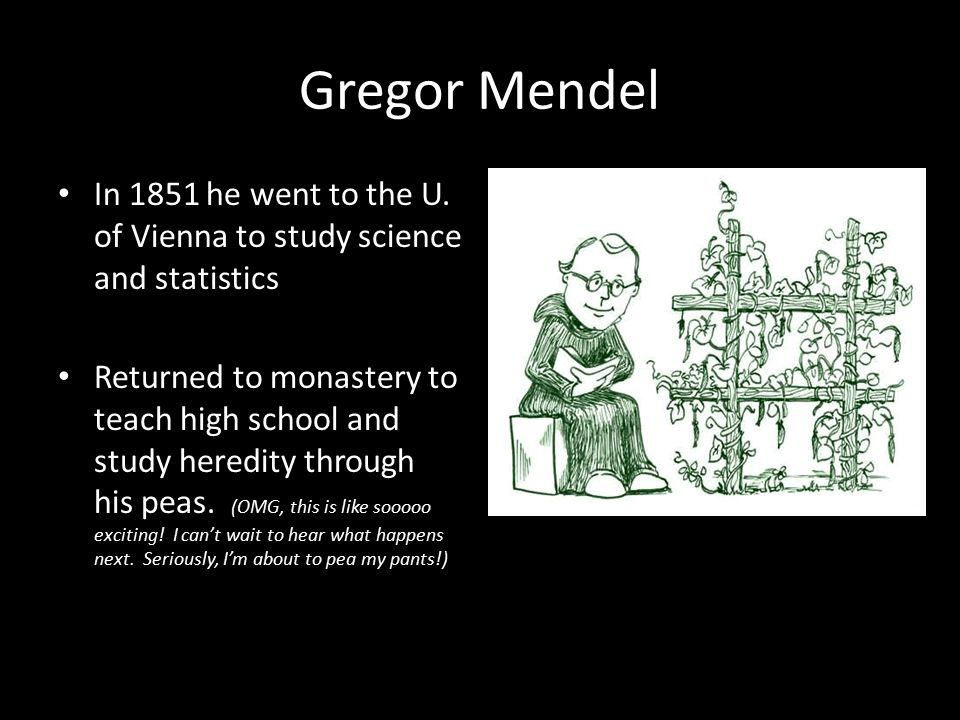Gregor Mendel In 1851 he went to the U.