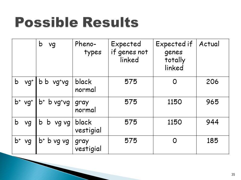 b vgPheno- types Expected if genes not linked Expected if genes totally linked Actual b vg + b b vg + vgblack normal 5750206 b + vg + b + b vg + vggra