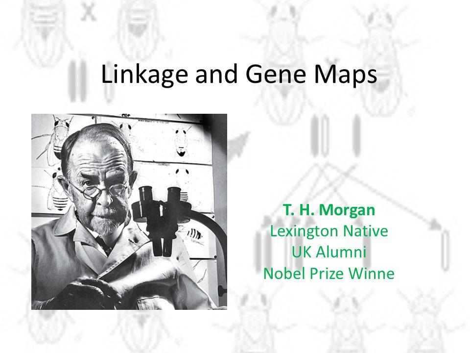 Linkage and Gene Maps T. H. Morgan Lexington Native UK Alumni Nobel Prize Winne