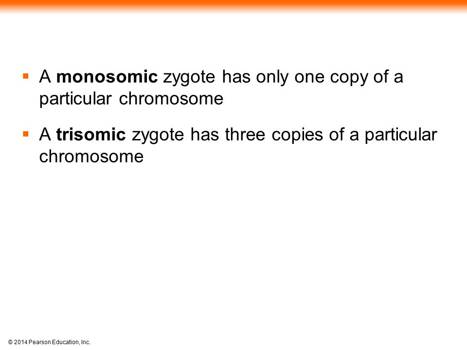 © 2014 Pearson Education, Inc.  A monosomic zygote has only one copy of a particular chromosome  A trisomic zygote has three copies of a particular