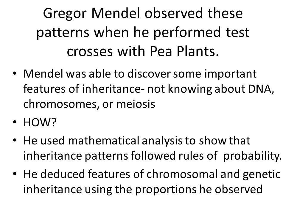 Gregor Mendel observed these patterns when he performed test crosses with Pea Plants. Mendel was able to discover some important features of inheritan