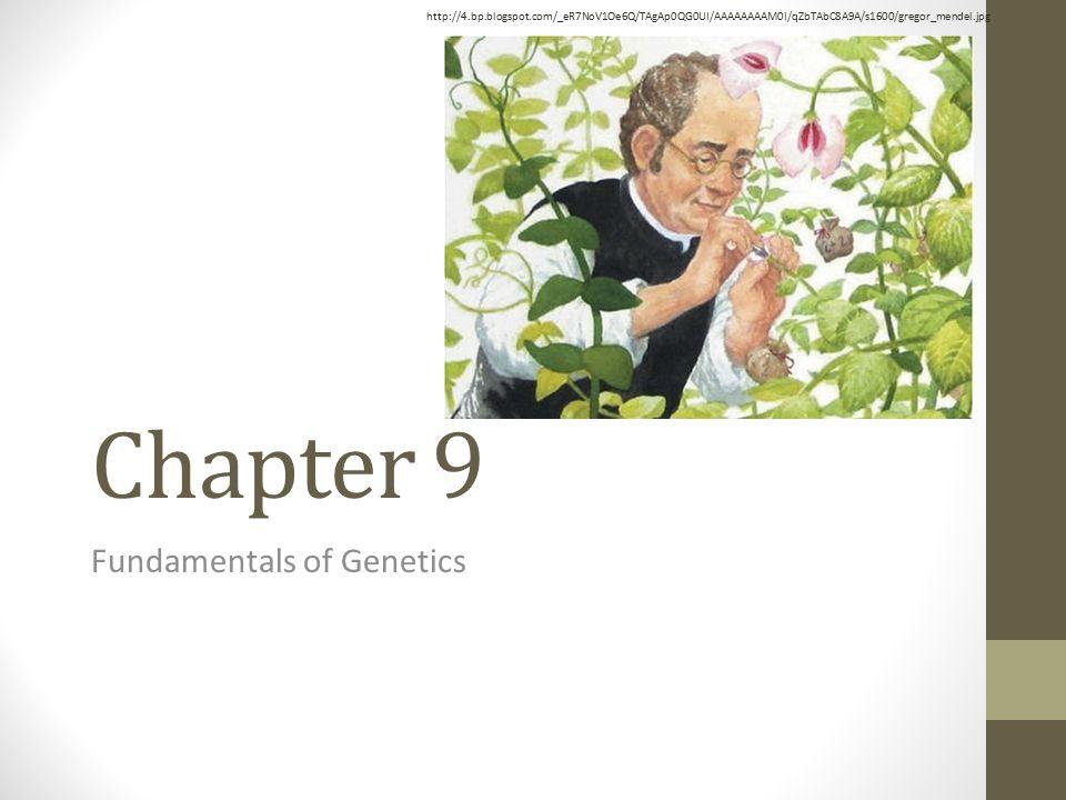 Chapter 9 Fundamentals of Genetics http://4.bp.blogspot.com/_eR7NoV1Oe6Q/TAgAp0QG0UI/AAAAAAAAM0I/qZbTAbC8A9A/s1600/gregor_mendel.jpg
