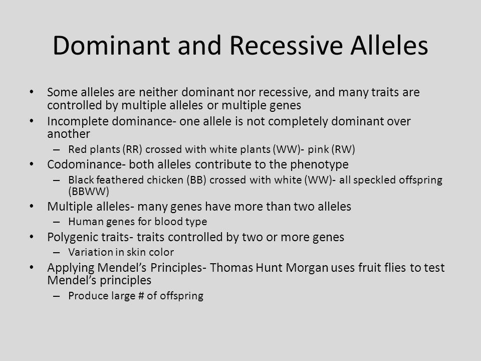 Dominant and Recessive Alleles Some alleles are neither dominant nor recessive, and many traits are controlled by multiple alleles or multiple genes I