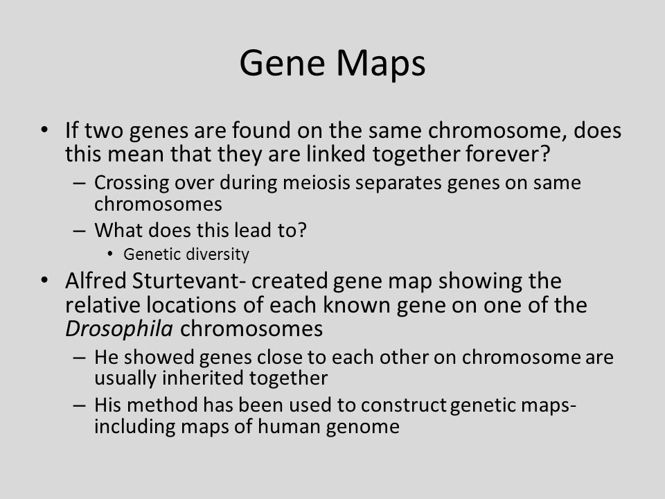 Gene Maps If two genes are found on the same chromosome, does this mean that they are linked together forever? – Crossing over during meiosis separate