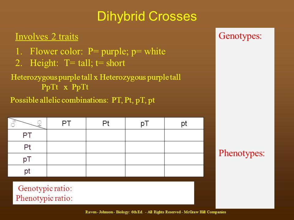 Dihybrid Crosses Raven - Johnson - Biology: 6th Ed.