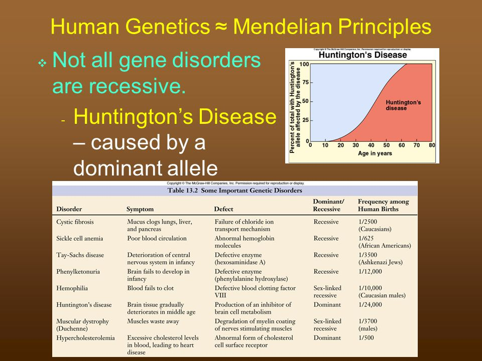  Not all gene disorders are recessive.