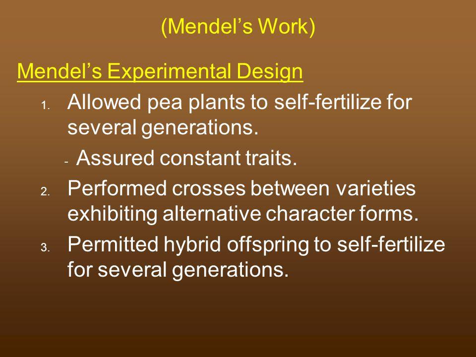(Mendel's Work) Mendel's Experimental Design 1.