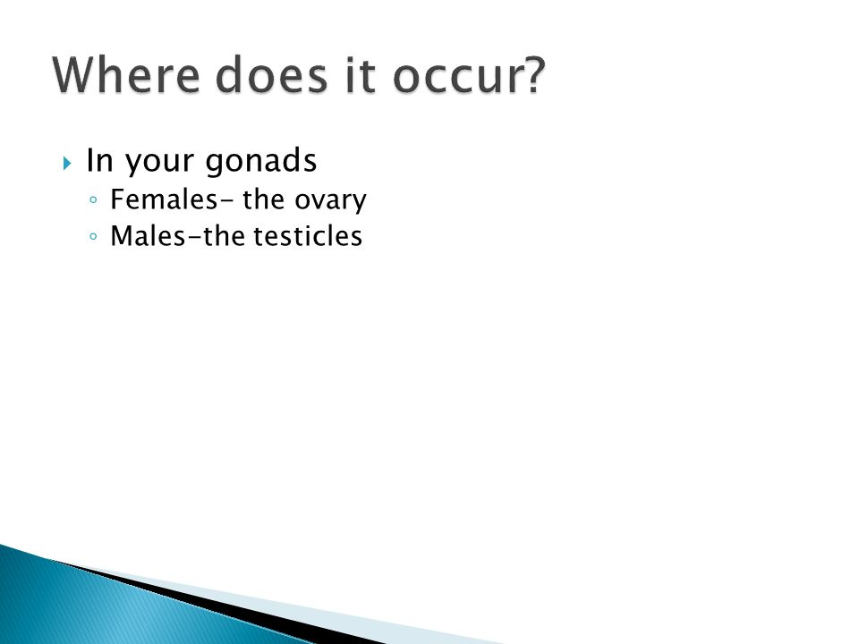  In your gonads ◦ Females- the ovary ◦ Males-the testicles