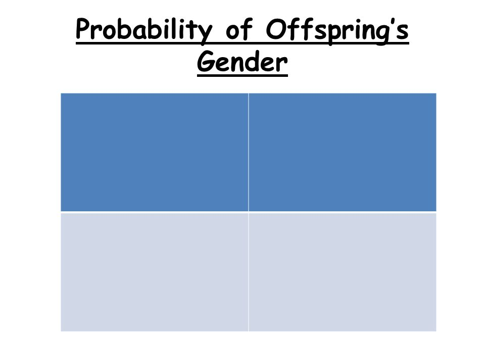 Probability of Offspring's Gender