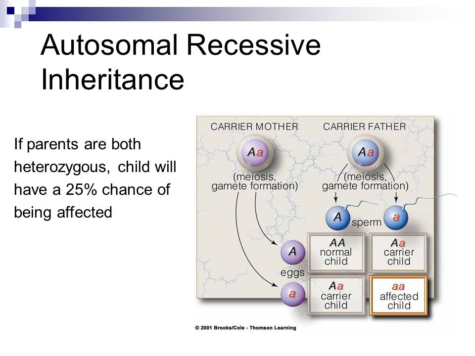 Autosomal Recessive Inheritance If parents are both heterozygous, child will have a 25% chance of being affected