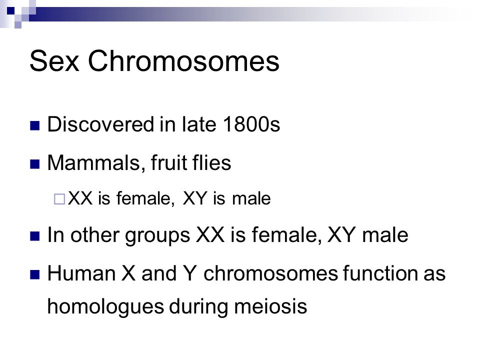 Sex Chromosomes Discovered in late 1800s Mammals, fruit flies  XX is female, XY is male In other groups XX is female, XY male Human X and Y chromosom