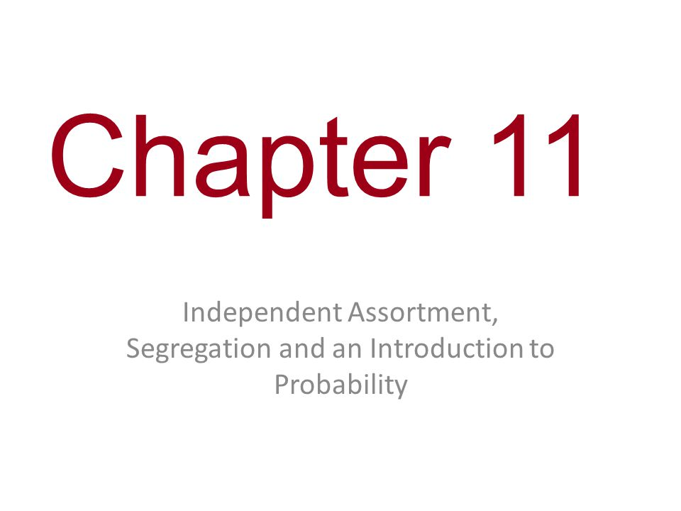 Chapter 11 Independent Assortment, Segregation and an Introduction to Probability