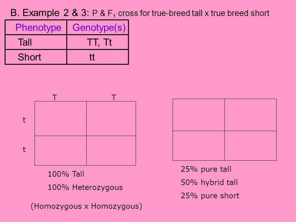B. Example 2 & 3: P & F 1 cross for true-breed tall x true breed short P cross F 1 crossT t t Tt TtTt TT Tttt 100% Tall 100% Heterozygous 25% pure tal