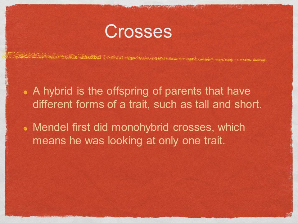 Crosses A hybrid is the offspring of parents that have different forms of a trait, such as tall and short.