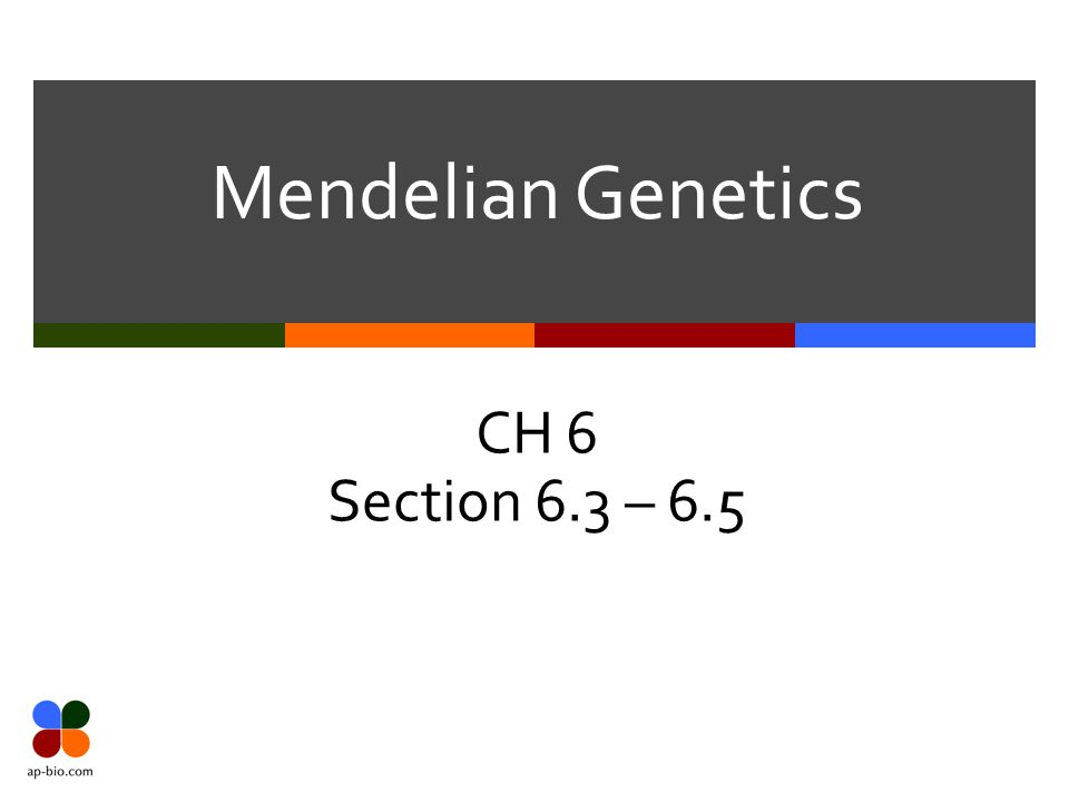 Mendelian Genetics CH 6 Section 6.3 – 6.5