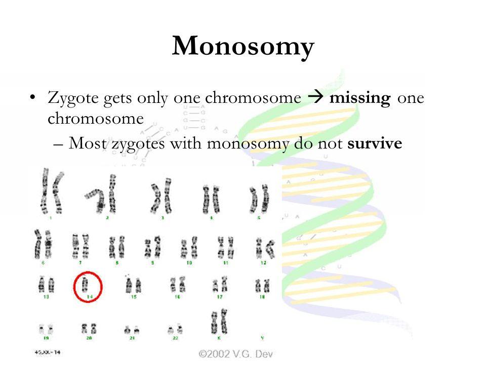 Monosomy Zygote gets only one chromosome  missing one chromosome –Most zygotes with monosomy do not survive