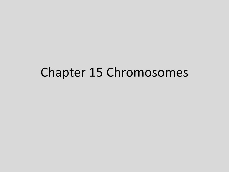 Chapter 15 Chromosomes