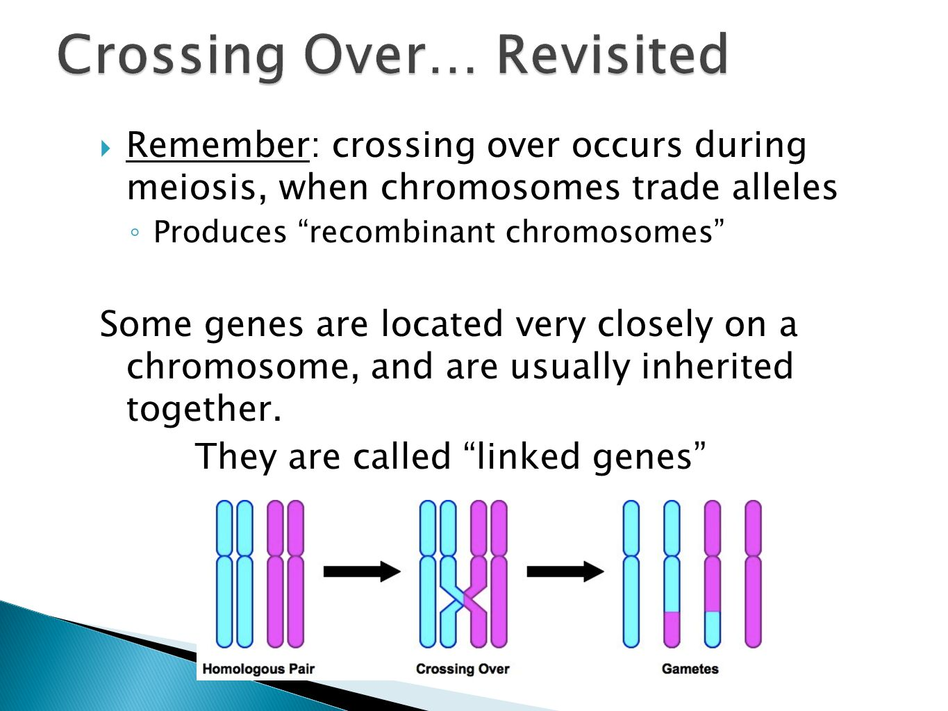 """ Remember: crossing over occurs during meiosis, when chromosomes trade alleles ◦ Produces """"recombinant chromosomes"""" Some genes are located very close"""