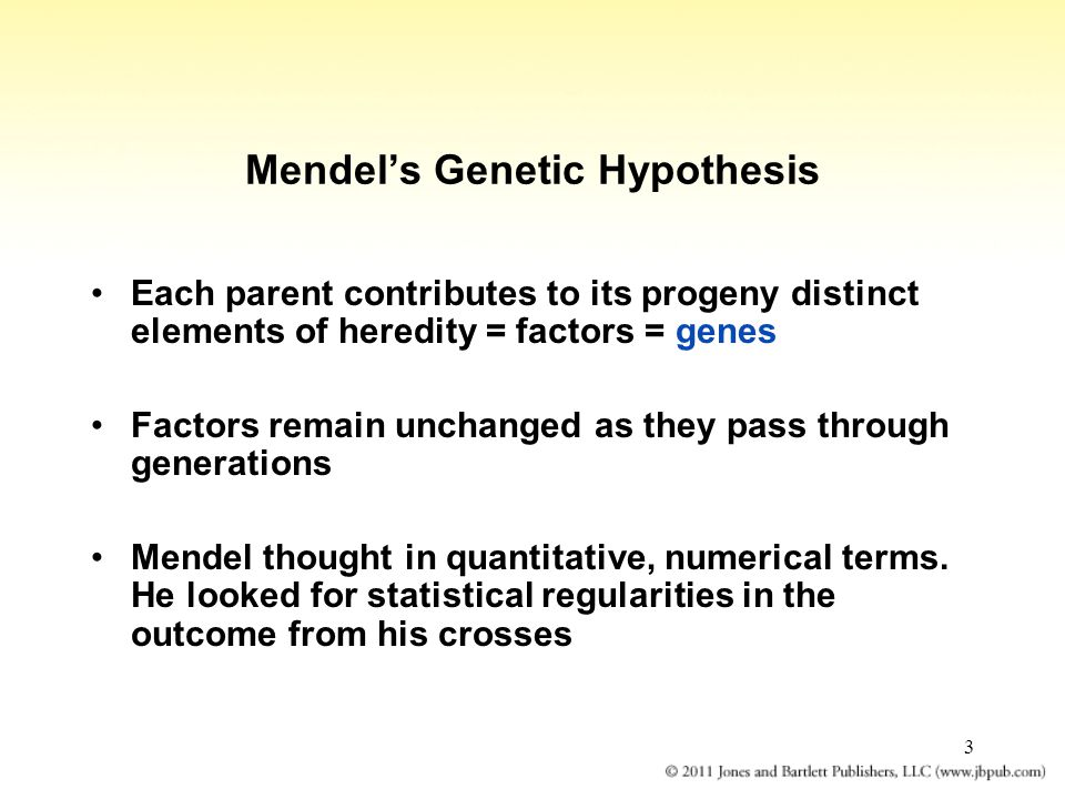 3 Mendel's Genetic Hypothesis Each parent contributes to its progeny distinct elements of heredity = factors = genes Factors remain unchanged as they