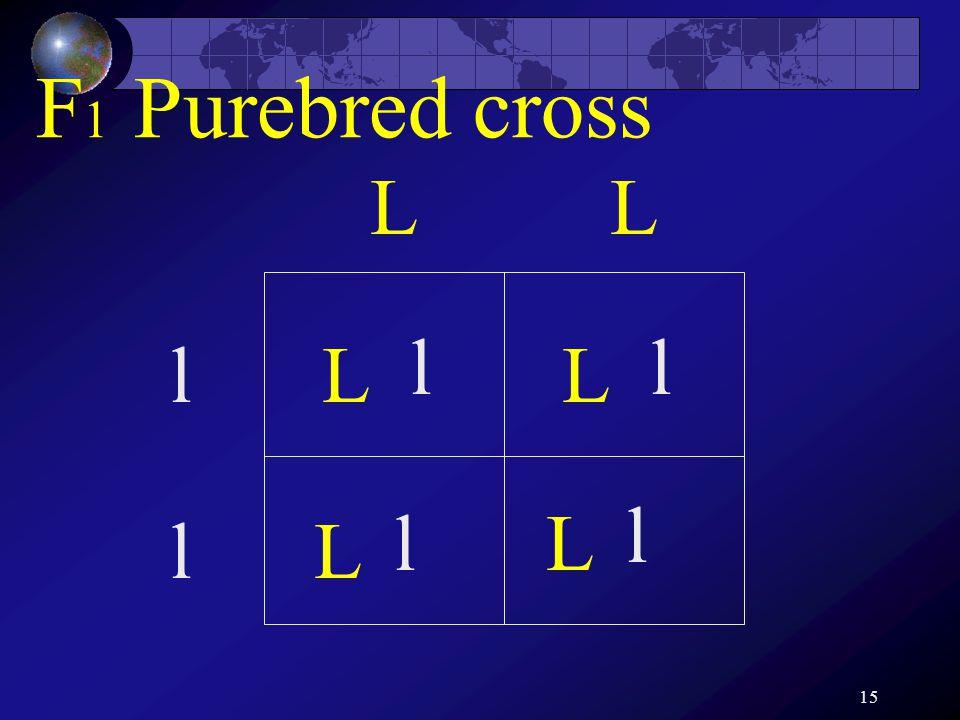 15 LL l l L L L L ll l l F 1 Purebred cross