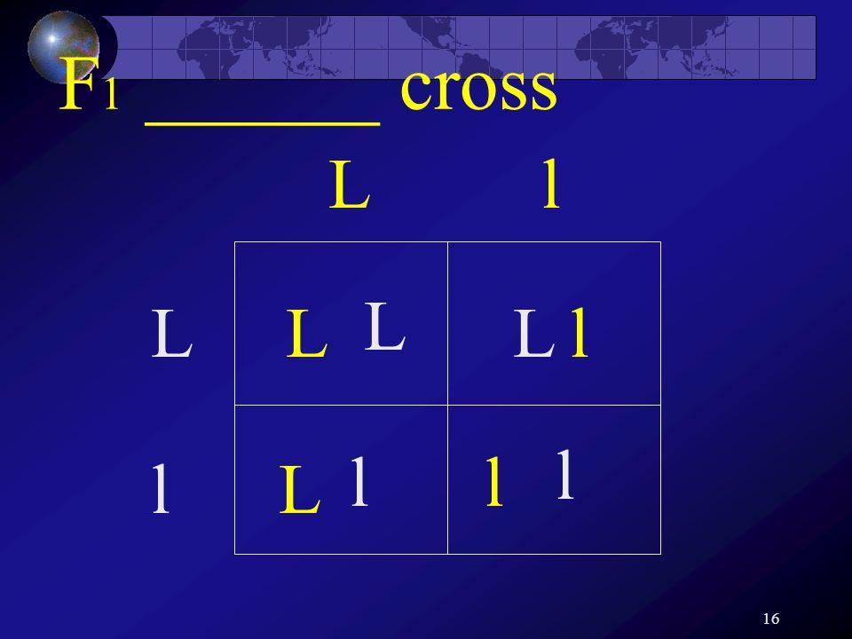 16 F 1 ______ cross Ll L l L L l l L L l l