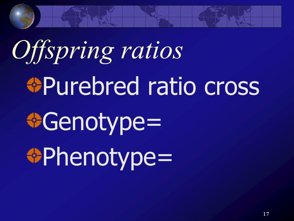 17 Offspring ratios Purebred ratio cross Genotype= Phenotype=