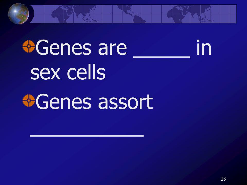 26 Genes are _____ in sex cells Genes assort __________