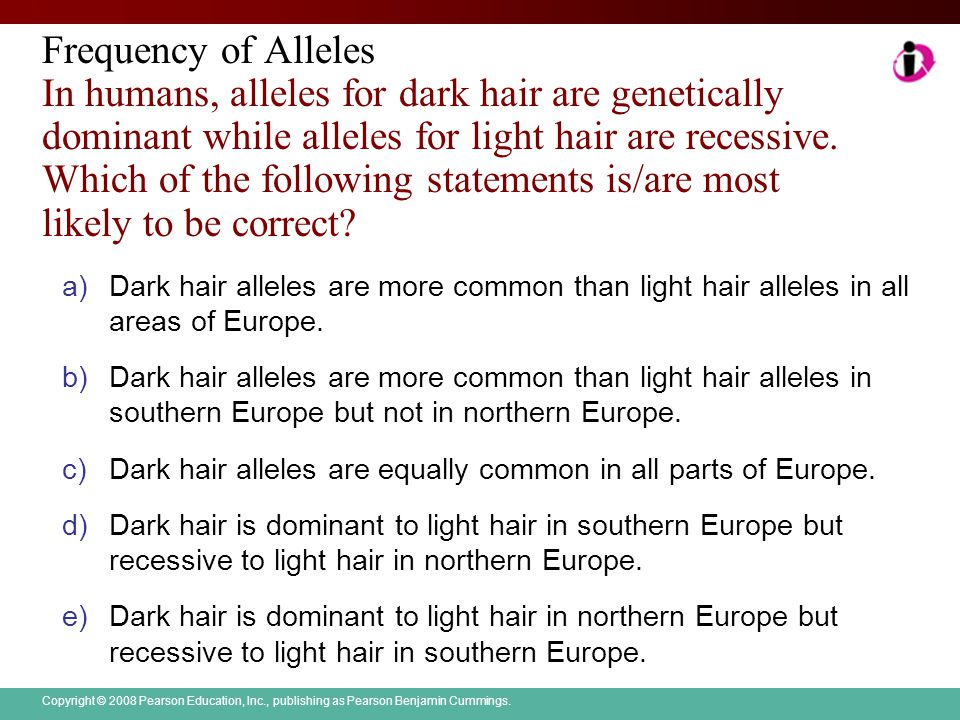 Copyright © 2008 Pearson Education, Inc., publishing as Pearson Benjamin Cummings. Frequency of Alleles In humans, alleles for dark hair are genetical
