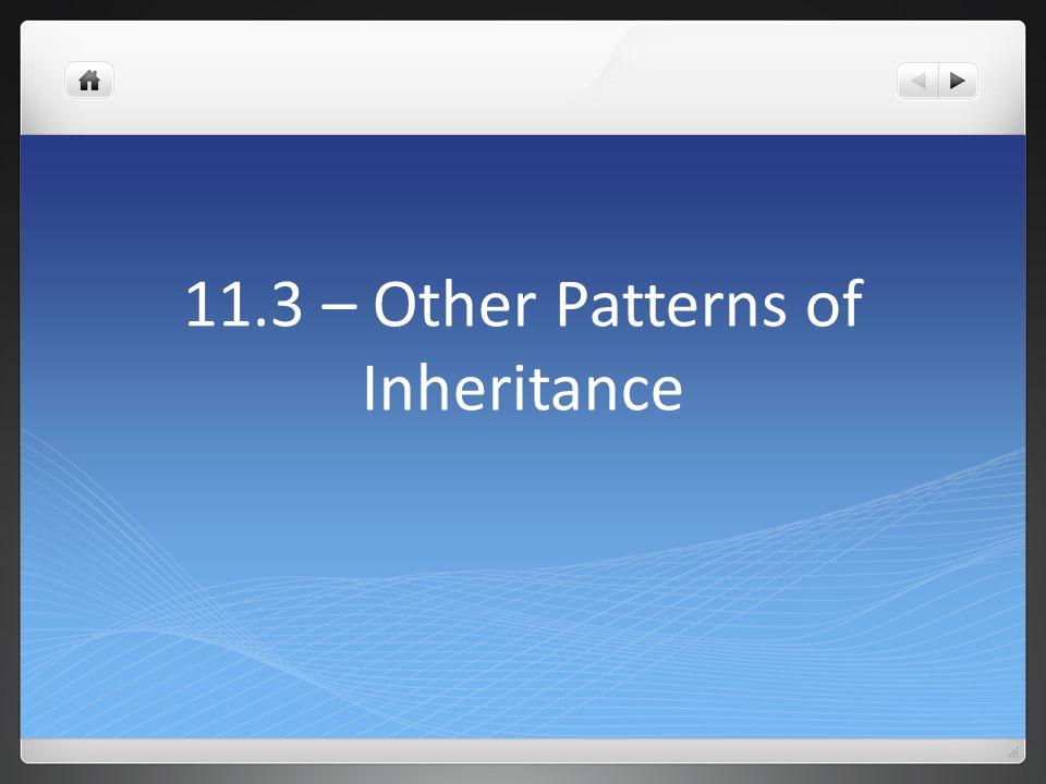 11.3 – Other Patterns of Inheritance