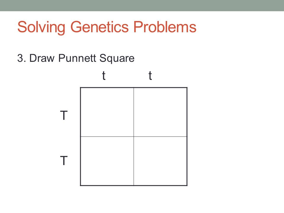 Solving Genetics Problems 3. Draw Punnett Square