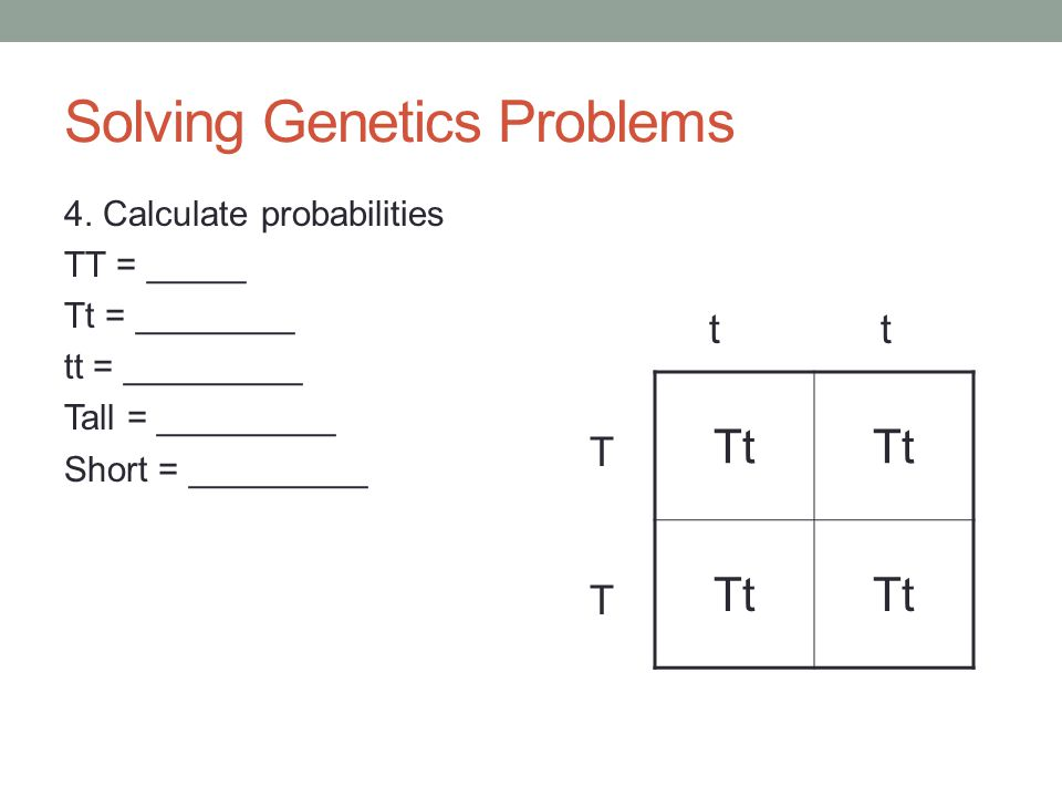 Solving Genetics Problems 3. Draw Punnett Square Tt t t TTTT